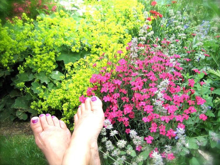 Barefoot Country Gardener