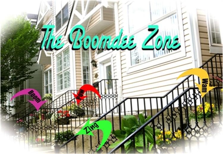 The Boomdee Zone