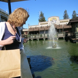 A Californian carwash (honest)