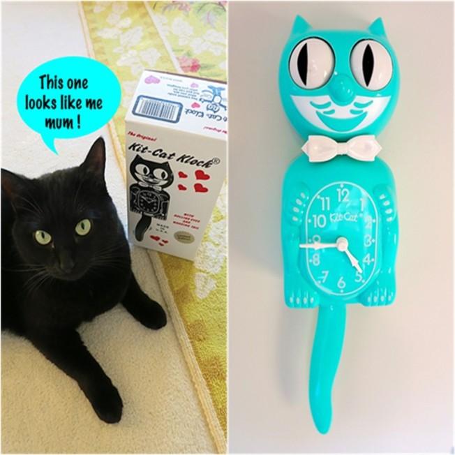 Aqua Kit-Cat Klock