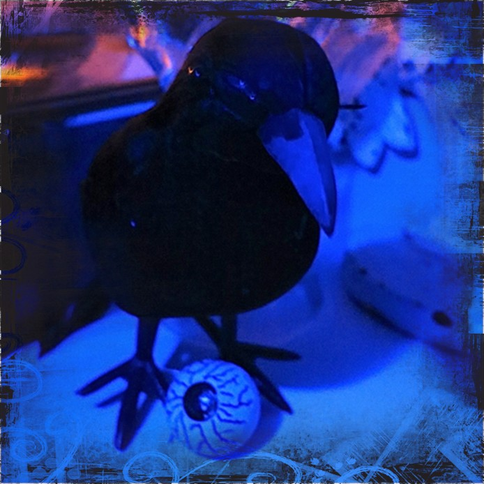 My Pet Crow