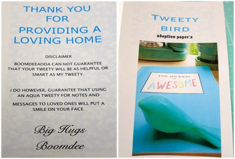Adopt a Tweety