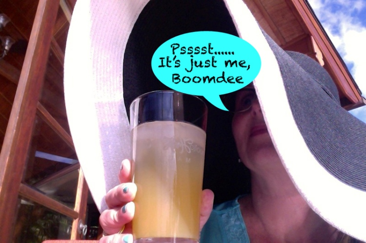 Undercover Boomdee
