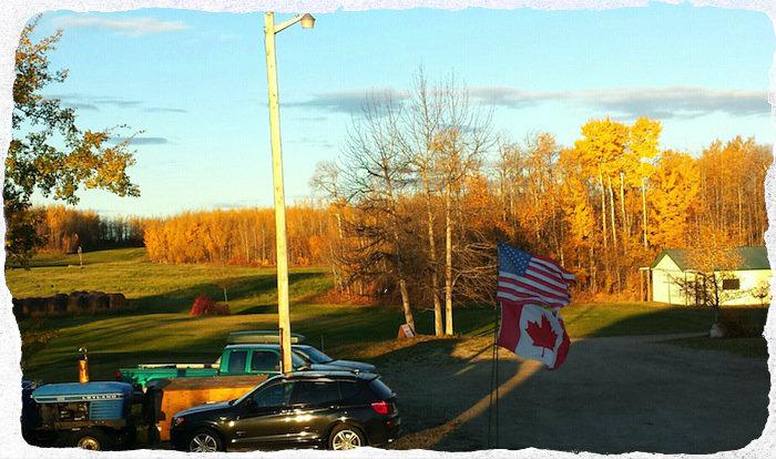 Fall Colours on the Prairies