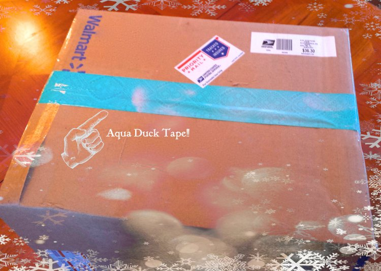 Aqua Duck Tape Rules