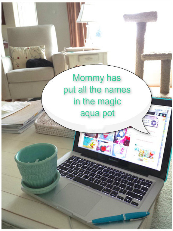 The magic aqua pot