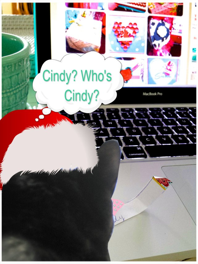 the winner is cindy